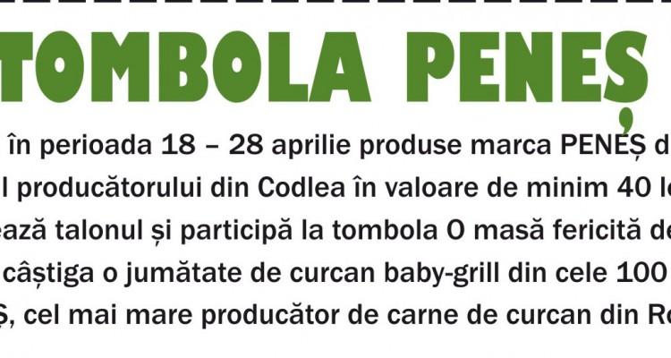 Tombola PenesCover