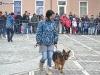 stagiu_psihologie_canina_codlea (25)