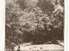 strand-1918.jpg
