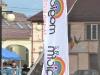 festivalul primaverii codlea 2014 (19)