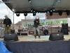 festivalul primaverii codlea 2014 (65)