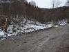 drumuri forestiere (8)