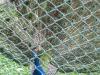 11Gradina zoologica-Codlea-Info.ro