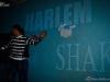HarlemShake-Mosquito (21)