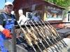 Festival Pescaresc (9) (Copy)