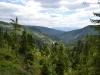 Valea Bistri#U021bei (Copy)