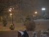 codlea iarna 2011 (3).jpg
