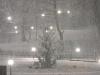 codlea iarna 2011 (8).jpg