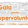 gala pentru supervoluntari 2011