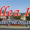 logo-codlea