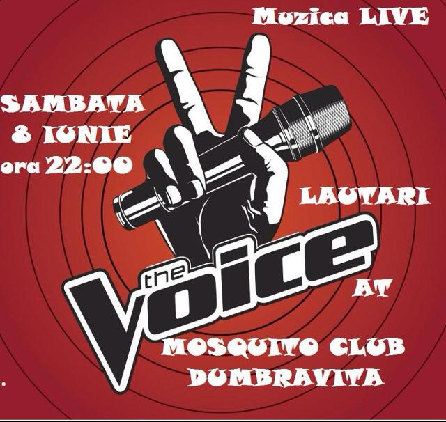 The Voice - Seara cu lautari