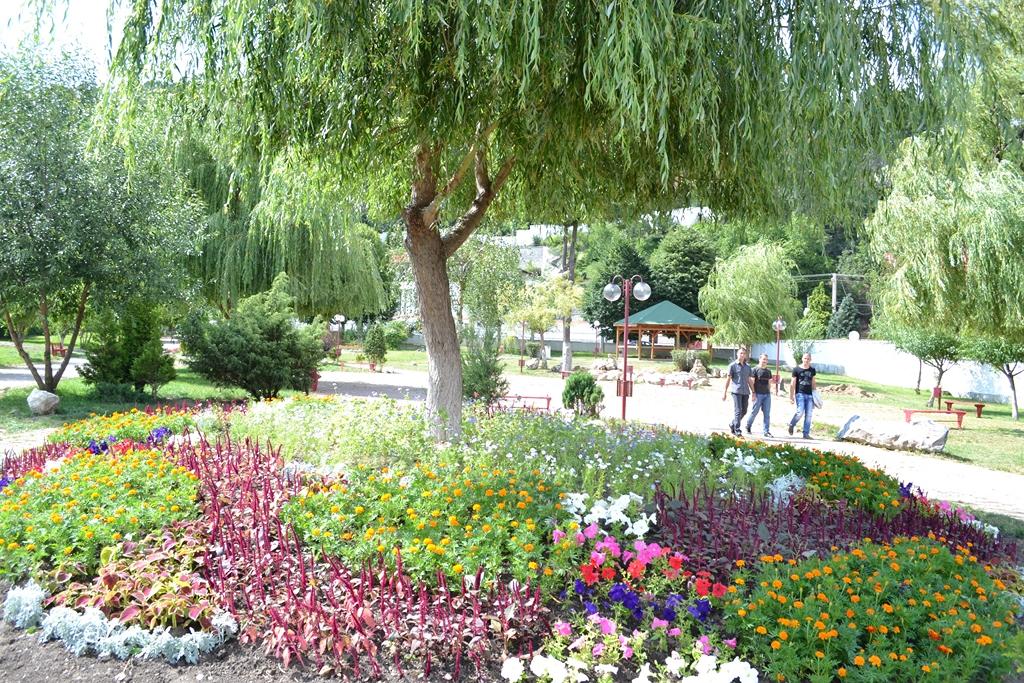 Parcul cu soare