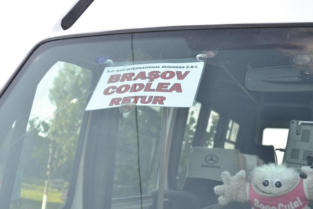 Transport Codlea Brasov