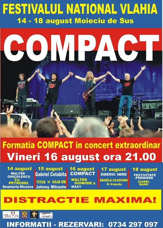 Afis festival Vlahia 2013 (Copy)