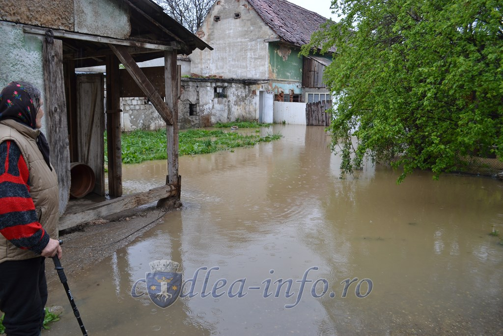 inundatii codlea (13)