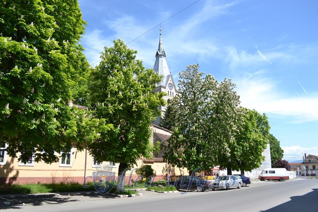 castani centrul istoric codlea