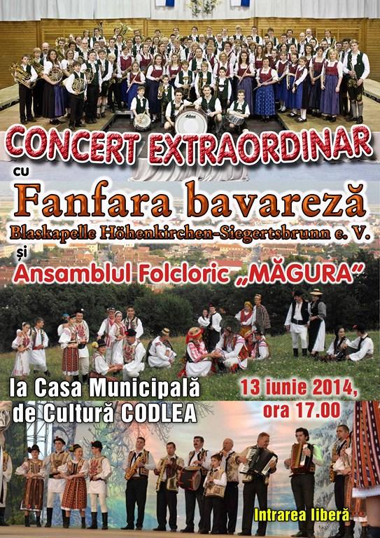 FANFARAbavareazaAFISa3VAR2 (Copy)