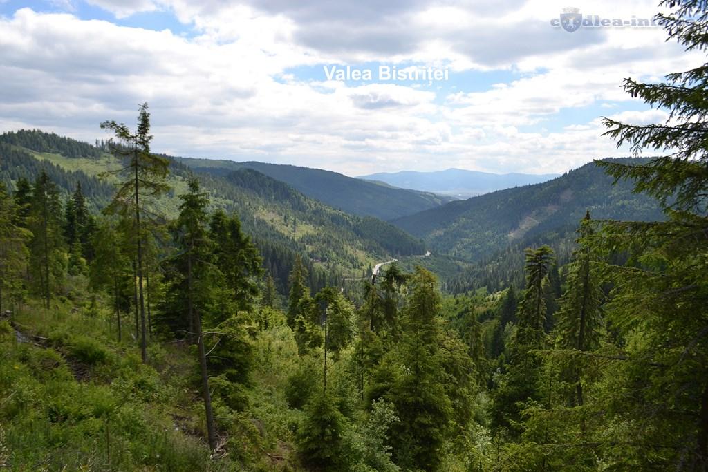 Valea Bistriței (Copy)