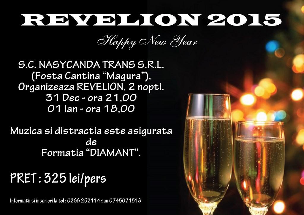 Revelion 2015 Magura (Copy)