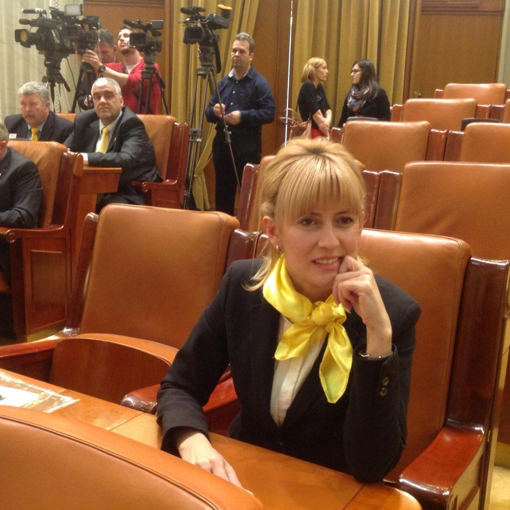 deputat PNL Maria Grecea