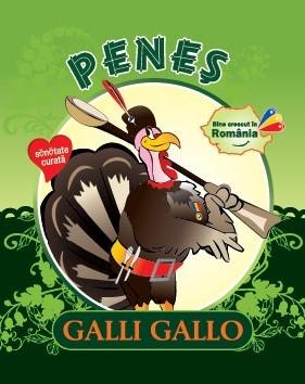 galli-gallo-penes curcanul