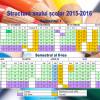 structura anului scolar