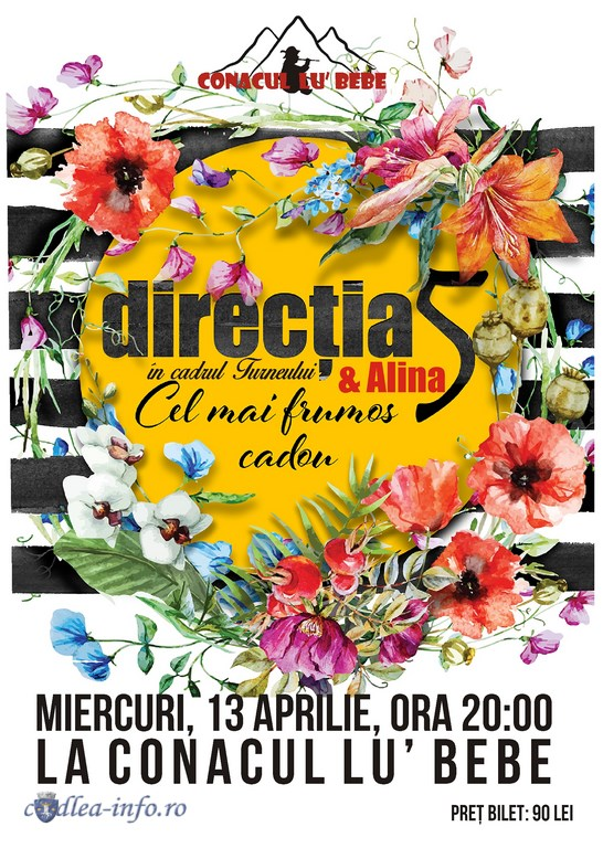 Directia 5 (Copy)