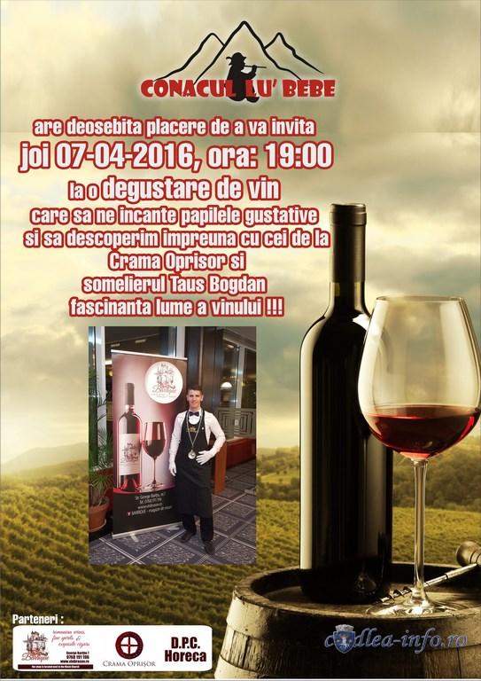 conac vin1 (Copy)