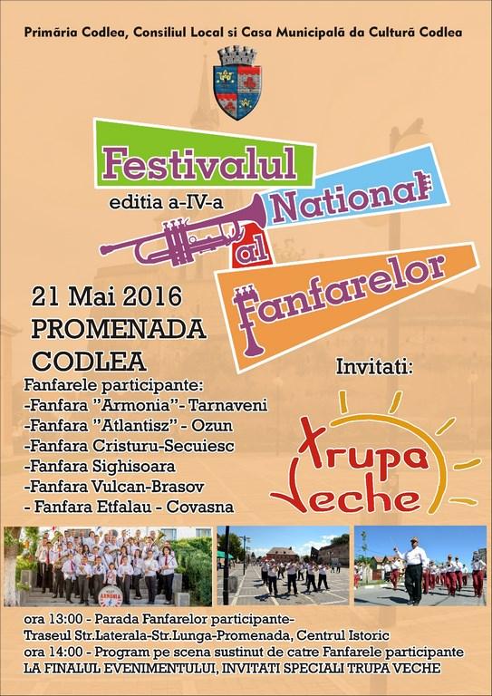 Festivalul fanfarelor (Copy)