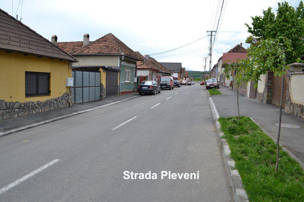 Strada Plevnei