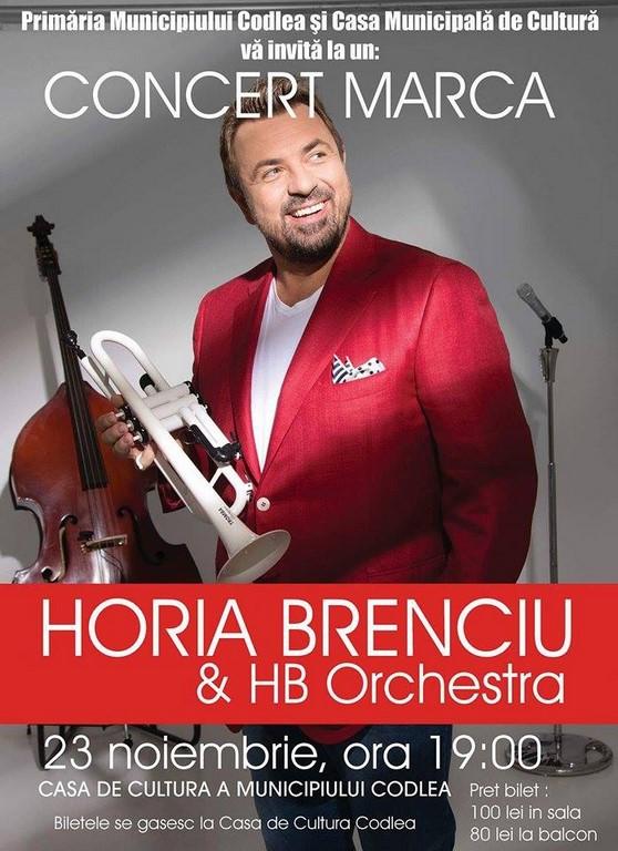horia-brenciu-copy-1