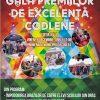 gala_premiilor_de_excelenta_codlene-copy
