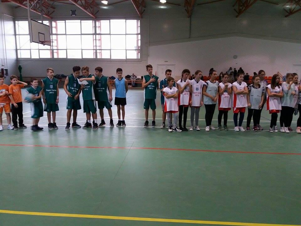 baschet_olimpiada_gimnaziala-4