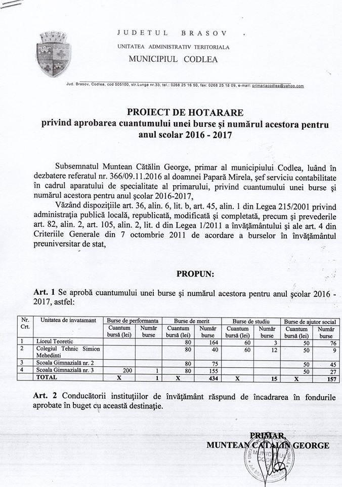 catalin_burse_merit_proiect