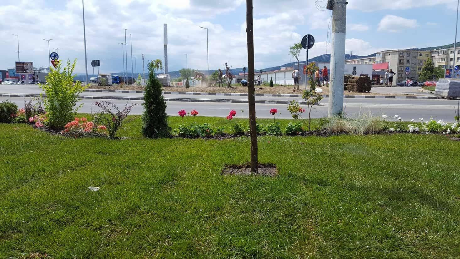 zona-verde-codlea (4)