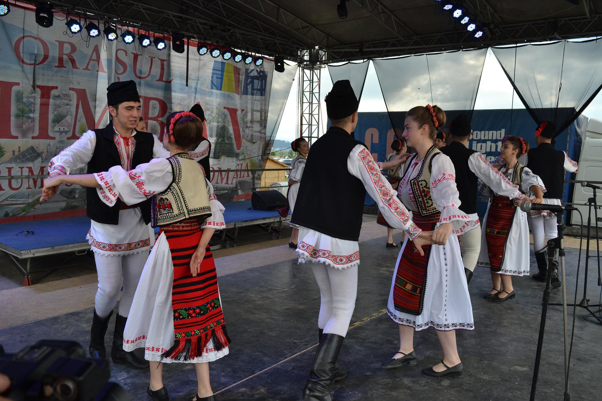 festivalul-aviatic-ghimbav (6)